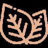 coffee_leaf.png